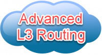 Hands On Advanced L3 Routing 2-Day